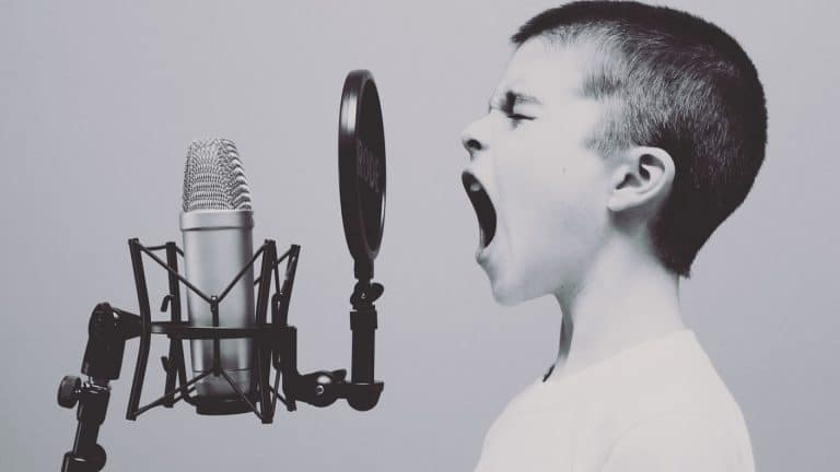 Un chanteur doit se démarquer grâce à un site Internet