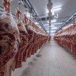 Séparation mécanique de la viande : comment optimiser sa production ?